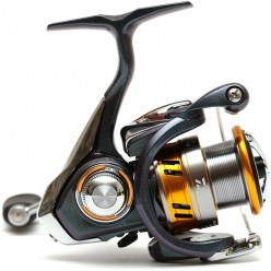 Mulineta Daiwa Regal LT